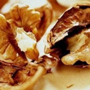 Рецепты из грецкого ореха при диабете