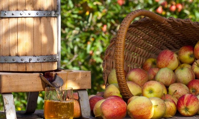 Можно ли есть яблоки при диабете