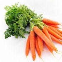 Морковь при диабете