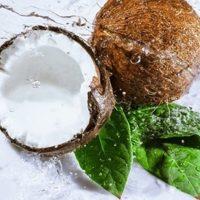 Кокос и кокосовое масло при сахарном диабете