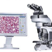 Цифровой микроскоп и его особенности