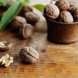 Можно ли грецкие орехи при сахарном диабете