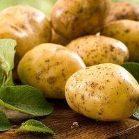 Можно ли есть картофель при диабете