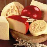 Можно ли есть сыр при диабете