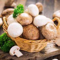 Какие можно грибы при диабете